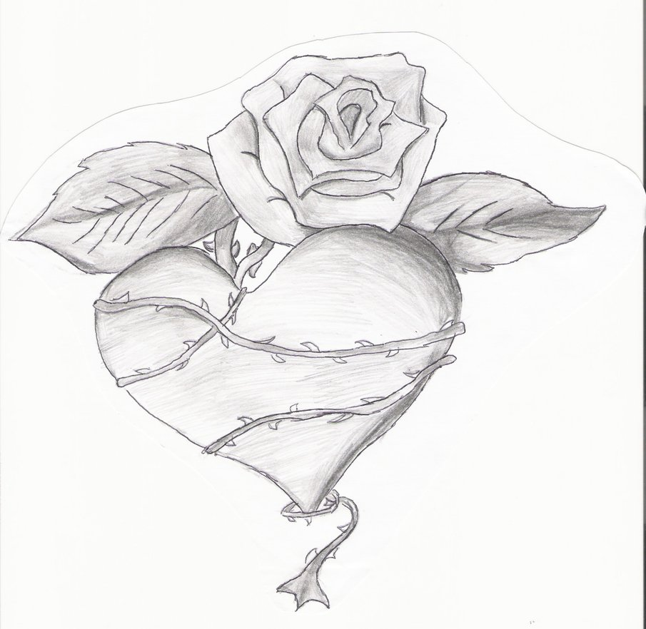 Drawings of hearts and roses clipart best for Amazing drawings of roses