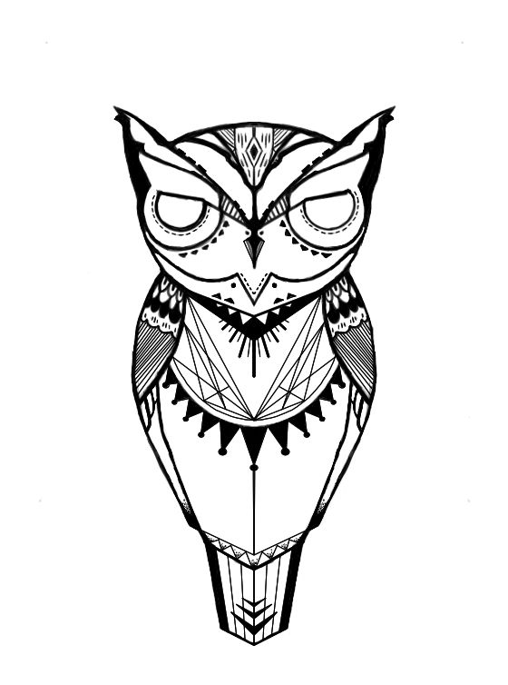 Owl Line Drawing Tattoo : Owl art tattoo clipart best
