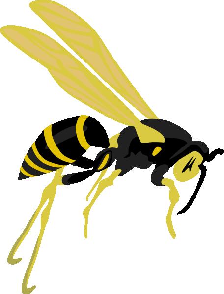 Cartoon Wasp - ClipArt Best