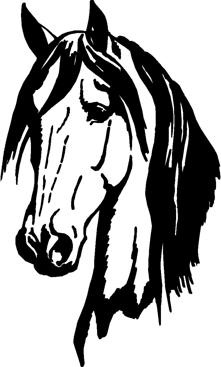 Horse vinyl window decal car stickers clipart best clipart best