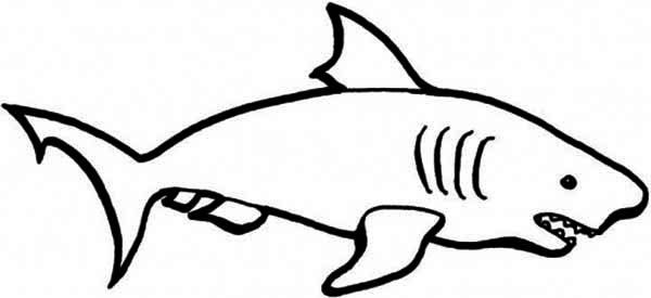 Easy D Line Drawings : Simple line drawings for kids clipart best