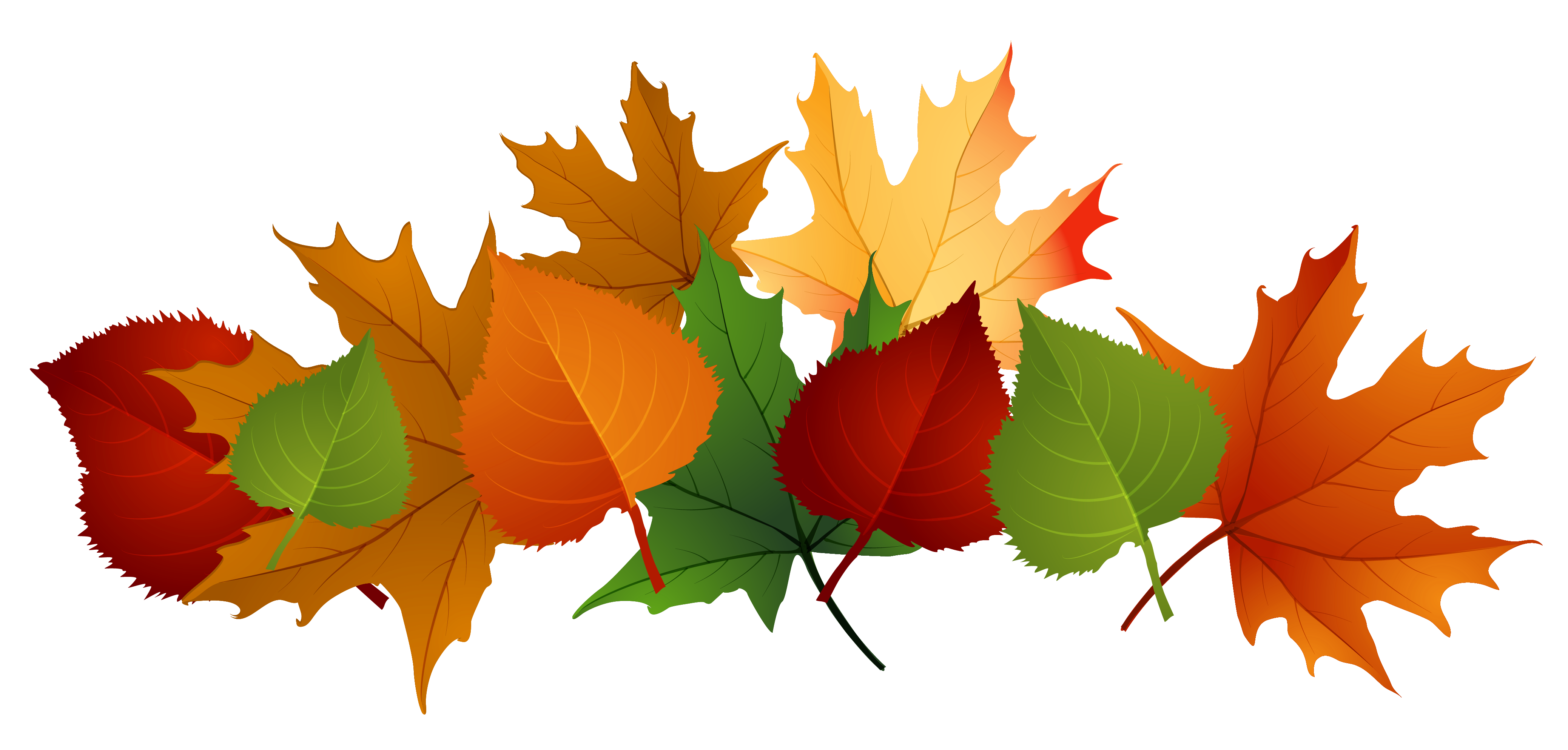 Fall Autumn Clipart