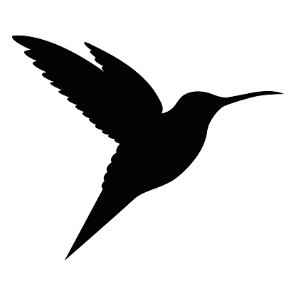 hummingbird clipart black and white clipart best hummingbird clip art silhouette hummingbird clip art free