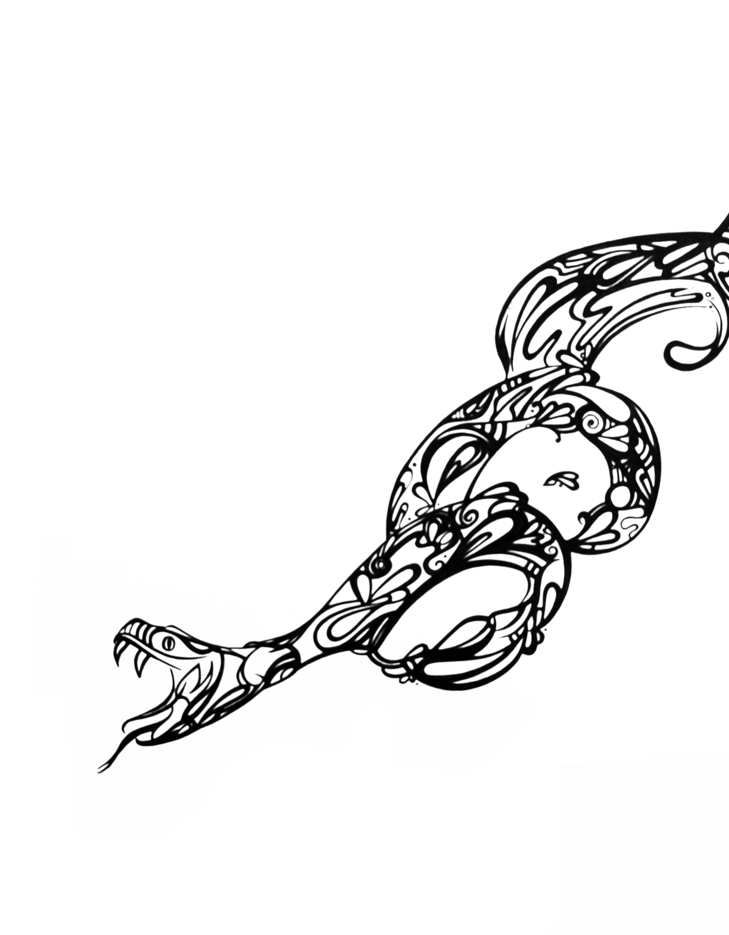 Line Drawing Snake : Snake line drawing clipart best