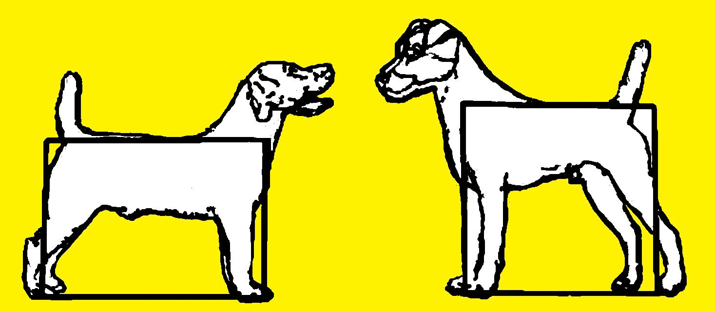 Terrierman's Daily Dose - - ClipArt Best - ClipArt Best White Parson Russell Terrier