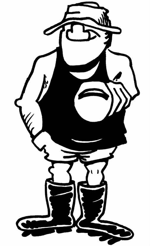 Line Drawing Kiwi : Kiwi line drawing clipart best