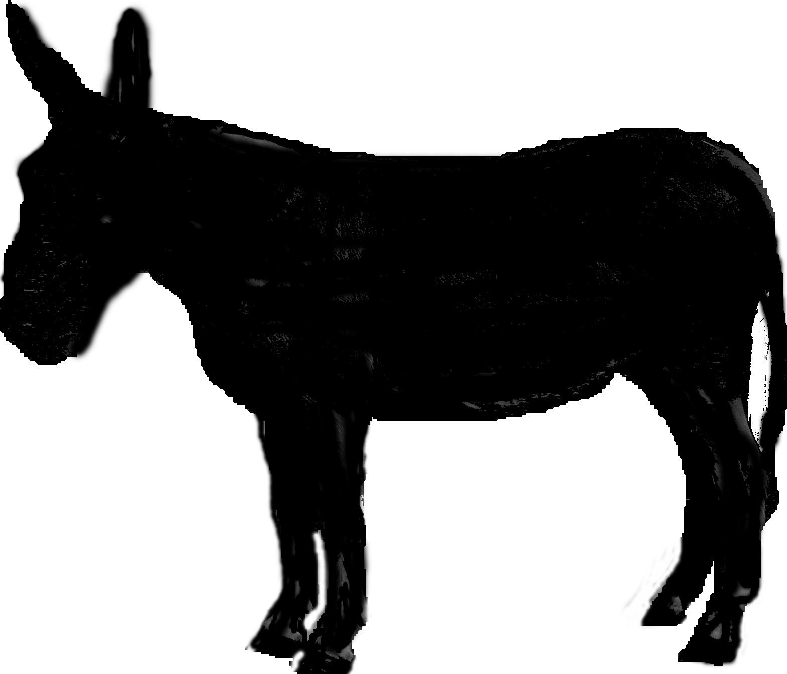 Donkey Head Clip Art D...