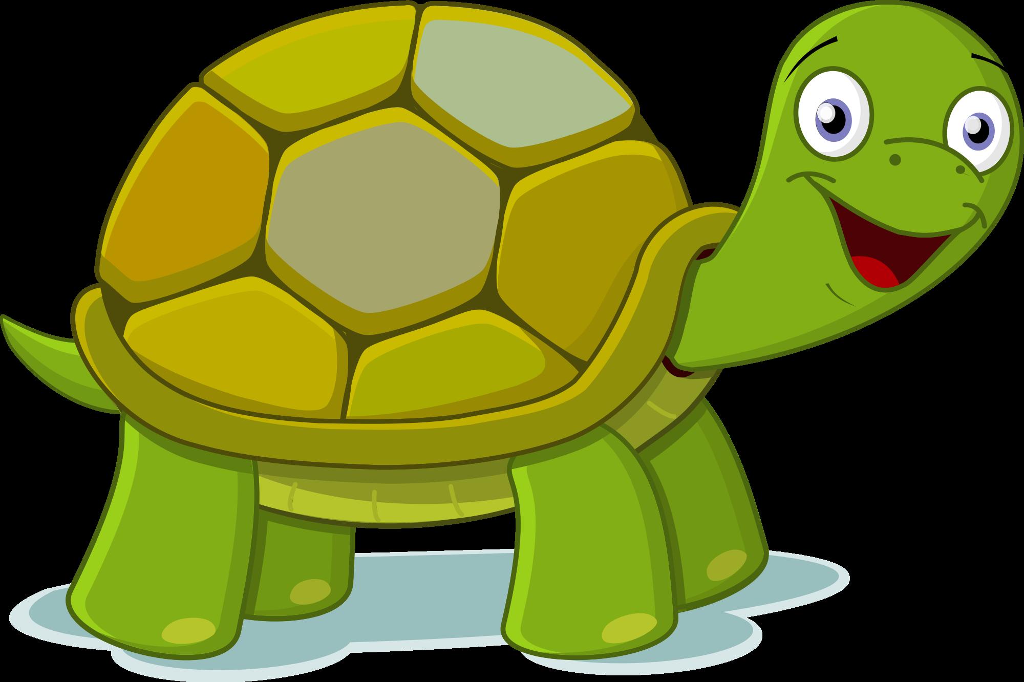 Clip Art Turtle - ClipArt Best