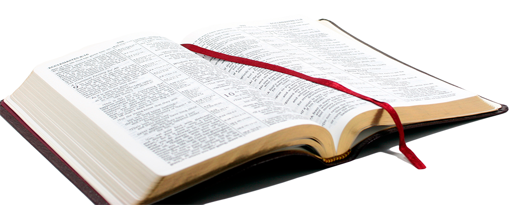 Open Bible Png - ClipArt Best