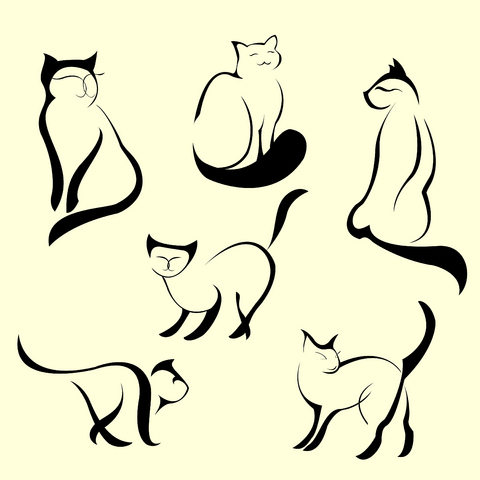 1000+ images about Siamese cat tattoo.