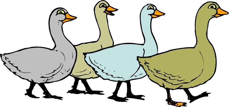 Goose Cartoon Pictures - ClipArt Best