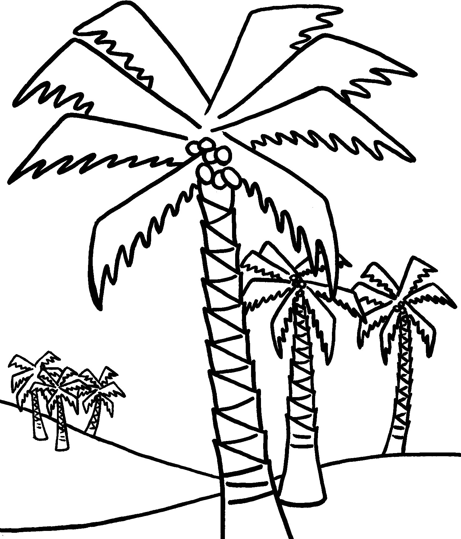 Free Palm Leaves Coloring Pages