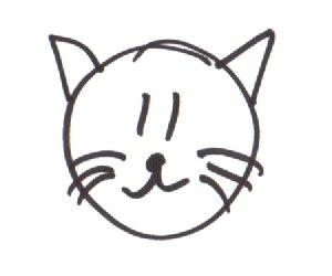 Easy Persian Cat Face Drawing