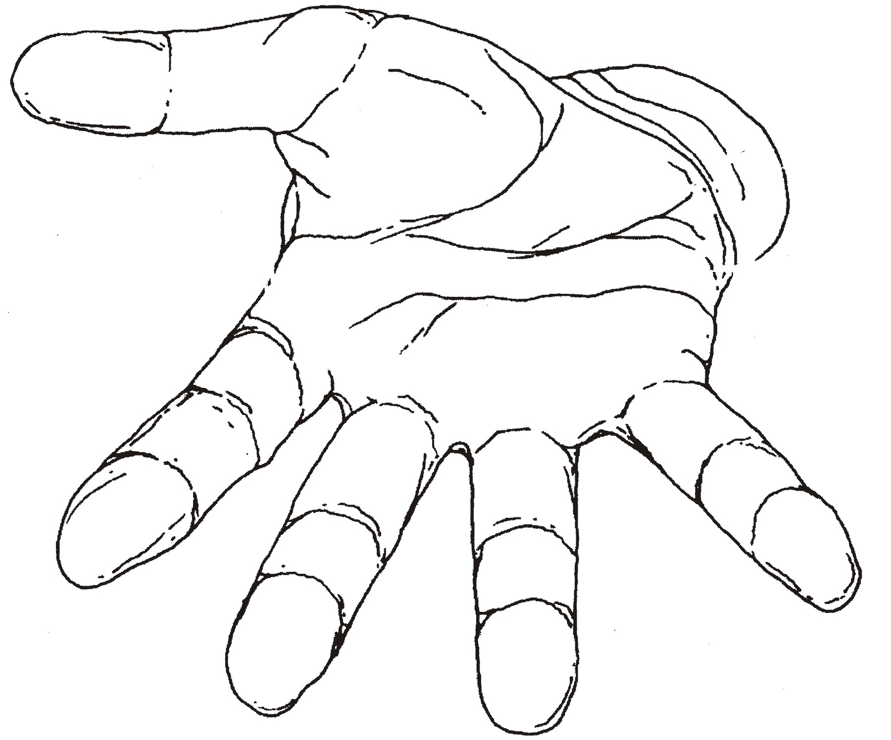 Jpg To Line Drawing : Hand outline template printable clipart best