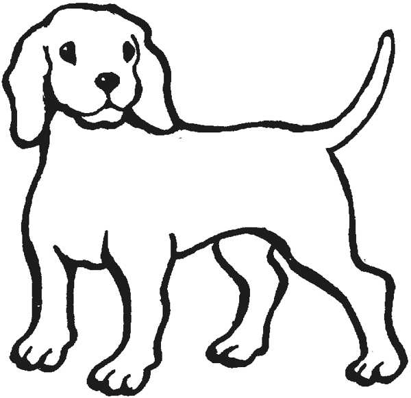 Line Drawings Of Animals Free Download : Outline of dog clipart best