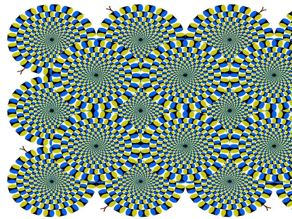 Funny Optical Illusions For Kids - ClipArt Best