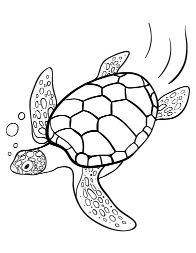 Black And White Drawing Of A Sea Turtle To Print, Free ...