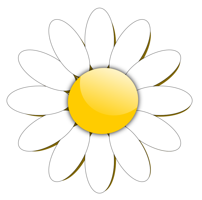 26 daisies flowers clipart . Free cliparts that you can download to ...