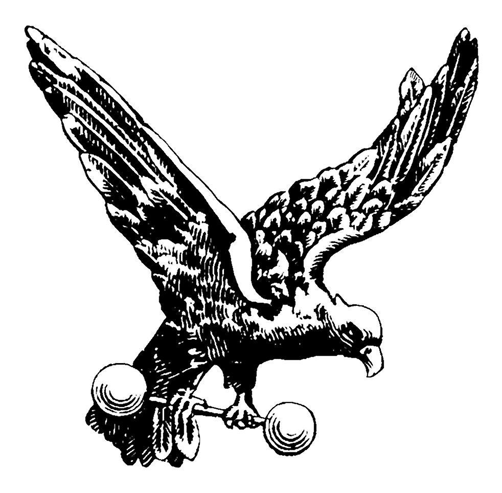 free polish eagle clip art - photo #46