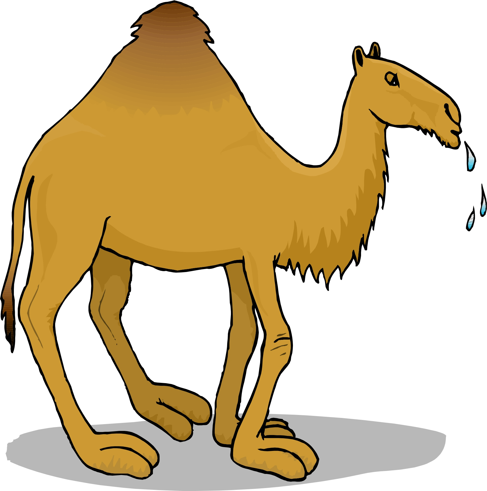 Animals Crafts Ideas: Reptiles, Critters, Bugs, Insects Arts Cartoon pictures of camels