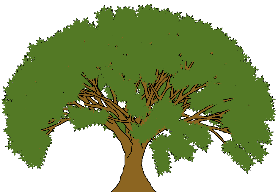 Cartoon Trees Pictures - ClipArt Best