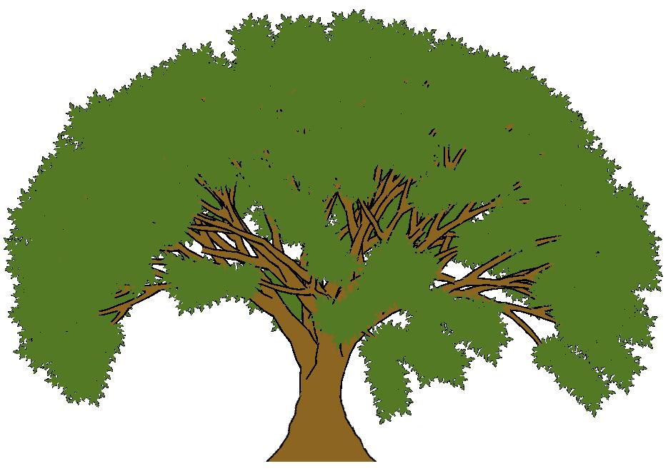 Trees Cartoon Clipart Best