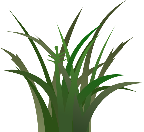Cartoon Jungle Grass Cartoon grass