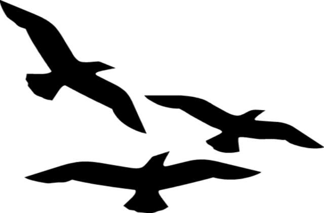 Bird Flying Clip Art - ClipArt Best