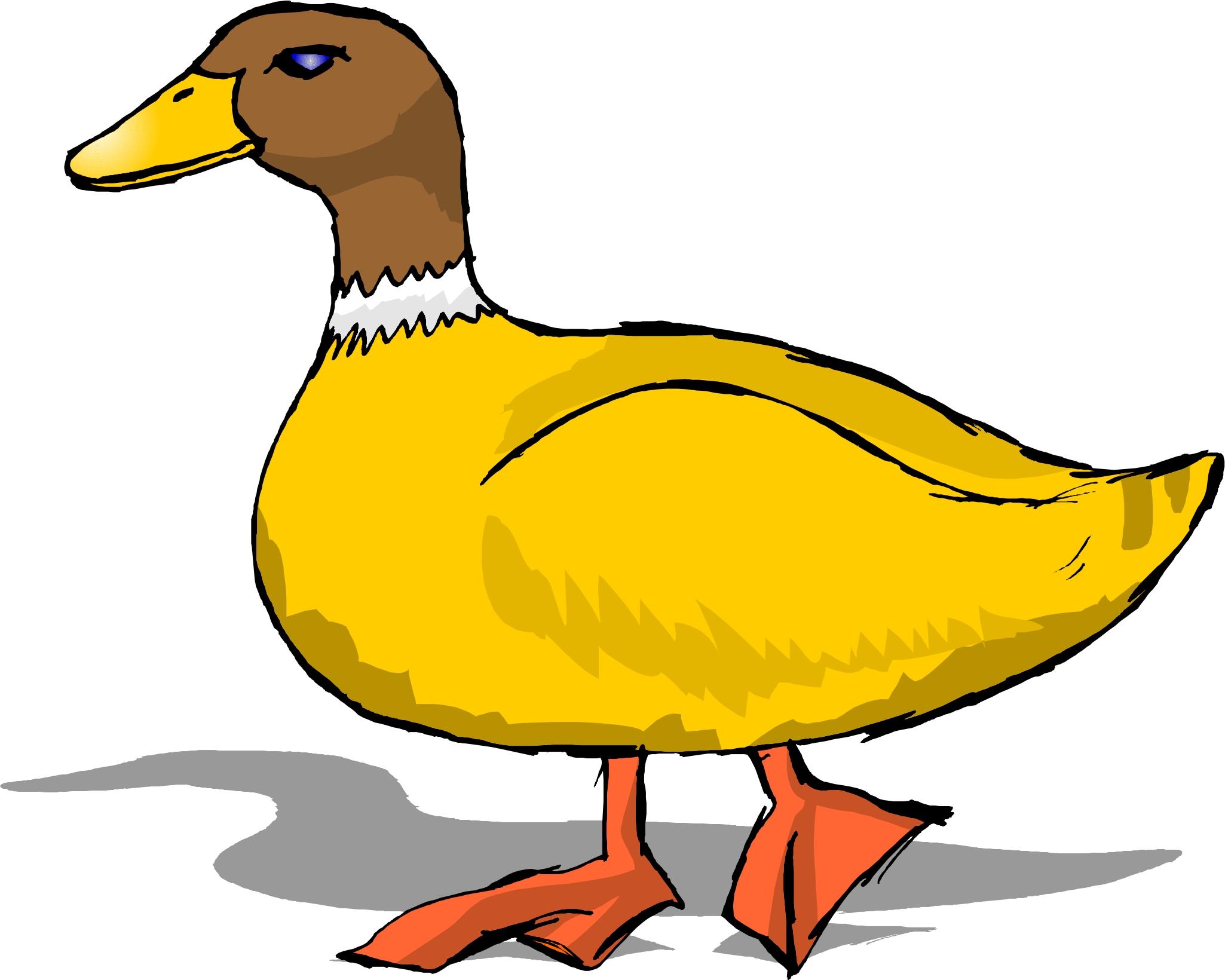 duck clip arts