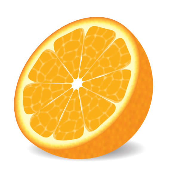 Orange Drawing - ClipArt Best