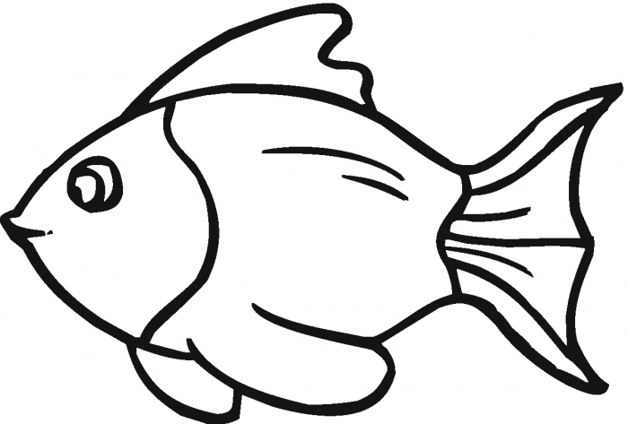 Fish Outlines - ClipArt Best