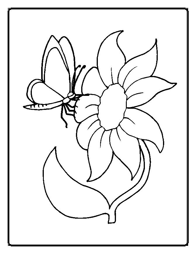 flowers to colour clipart best