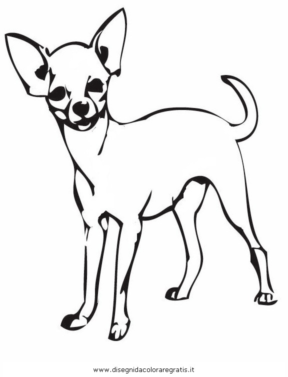 Chihuahua Clipart ClipArt Best