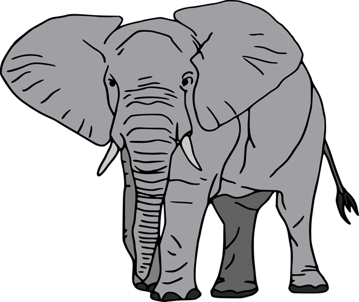 Elephants Pictures For Kids - ClipArt Best