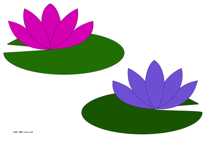 Go back gt gallery for gt lily pad flower clipart