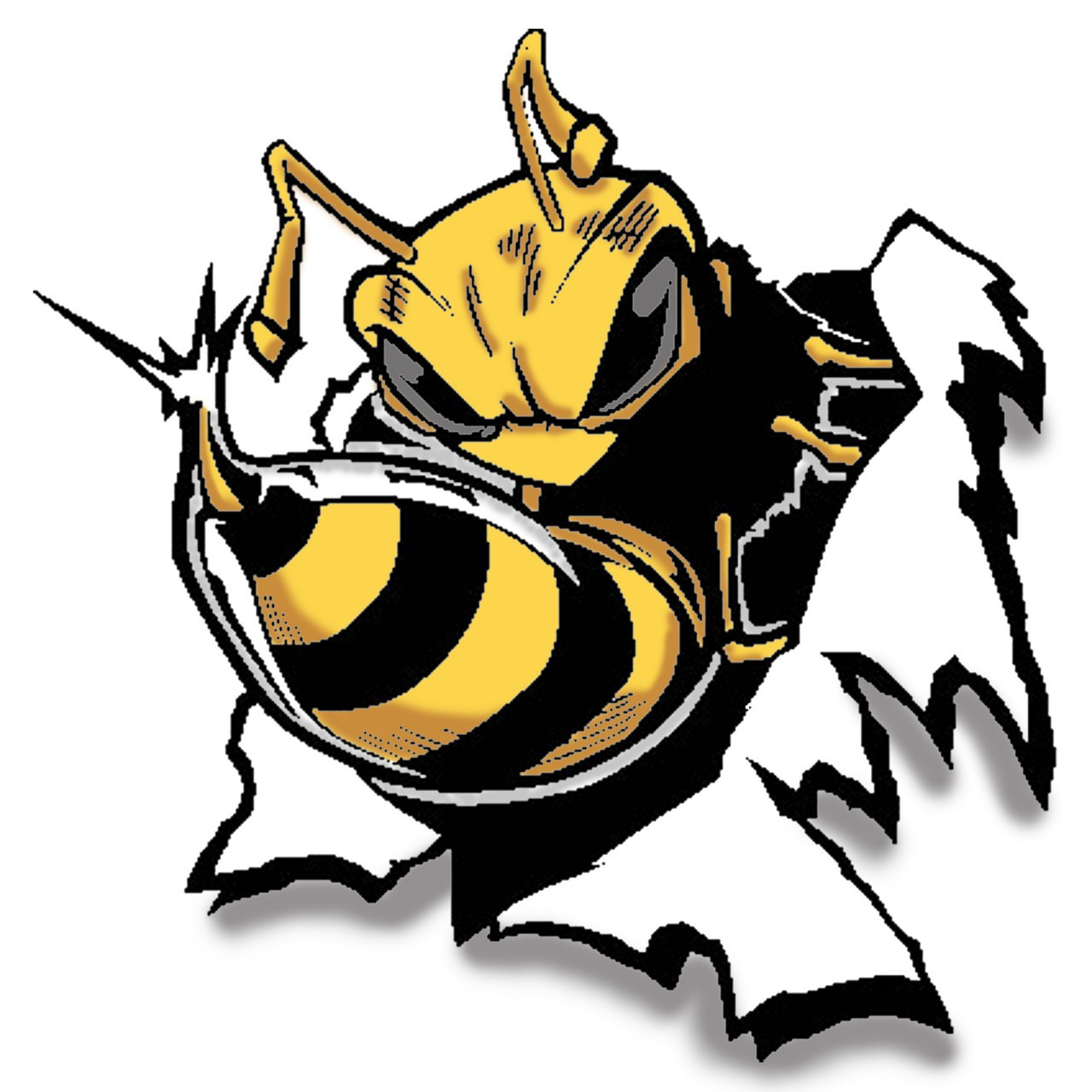 free clip art yellow jacket - photo #32