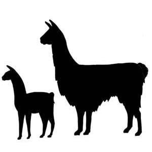 Clip Art Alpaca Clip Art alpaca clip art clipart best hostted