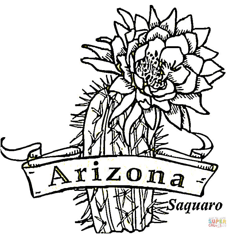 State flag of florida coloring page clipart best for Arizona flag coloring page