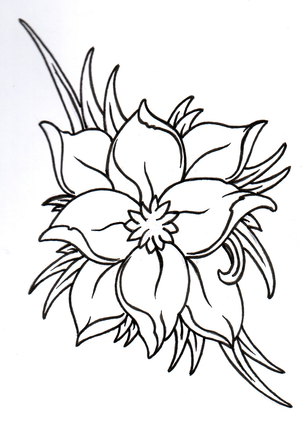 Flower Outline Designs - ClipArt Best