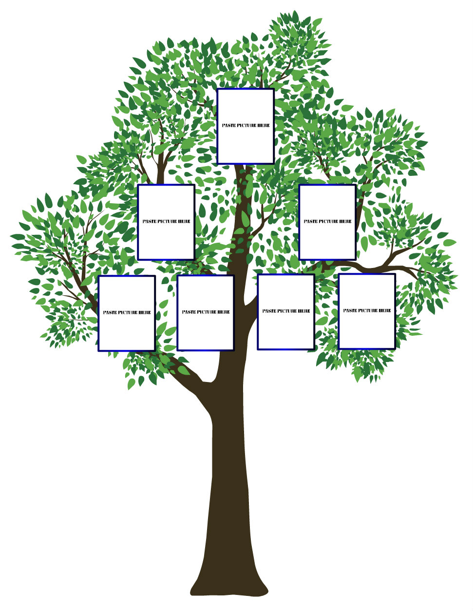 Simple family tree template clipart best for Plain family tree template