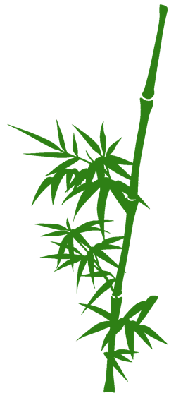 bamboo trees png - photo #20