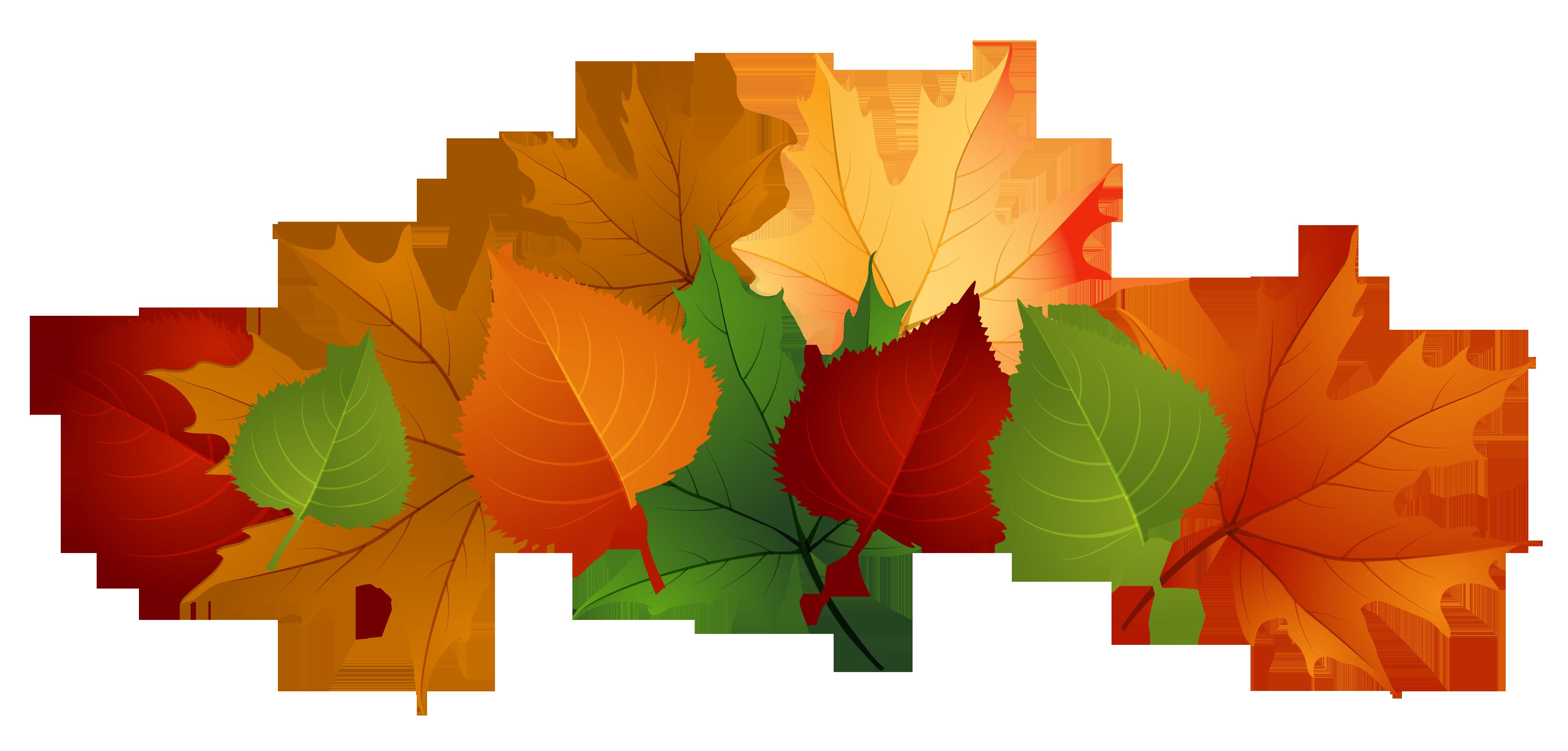 Clip Art Clip Art Leaves clip art of leaves clipart best leaf border tumundografico