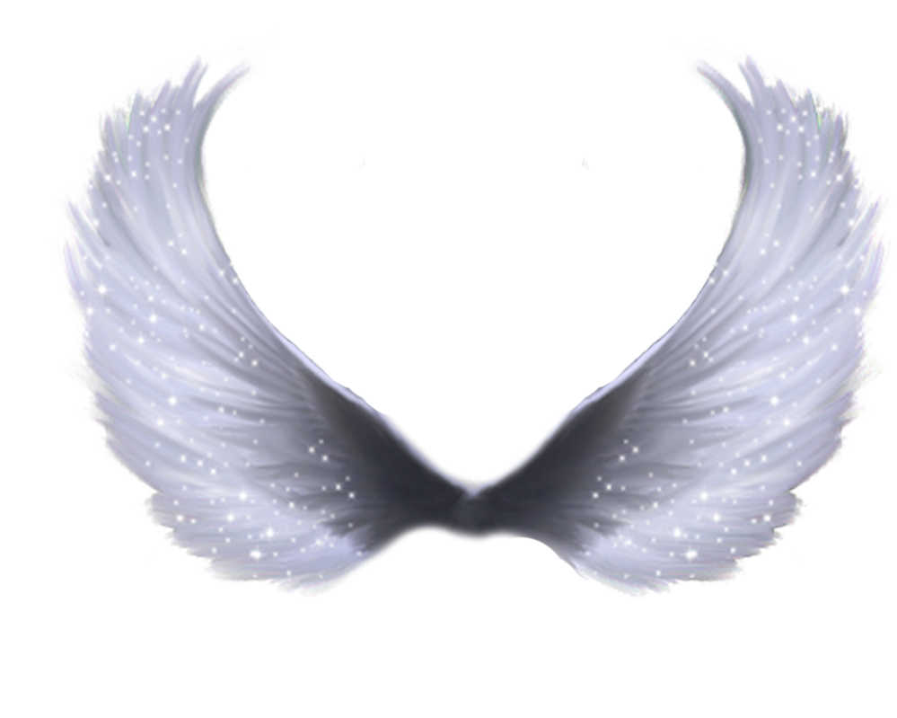 ... : More Like Wings png by Zozziegirl - ClipArt Best - ClipArt Best