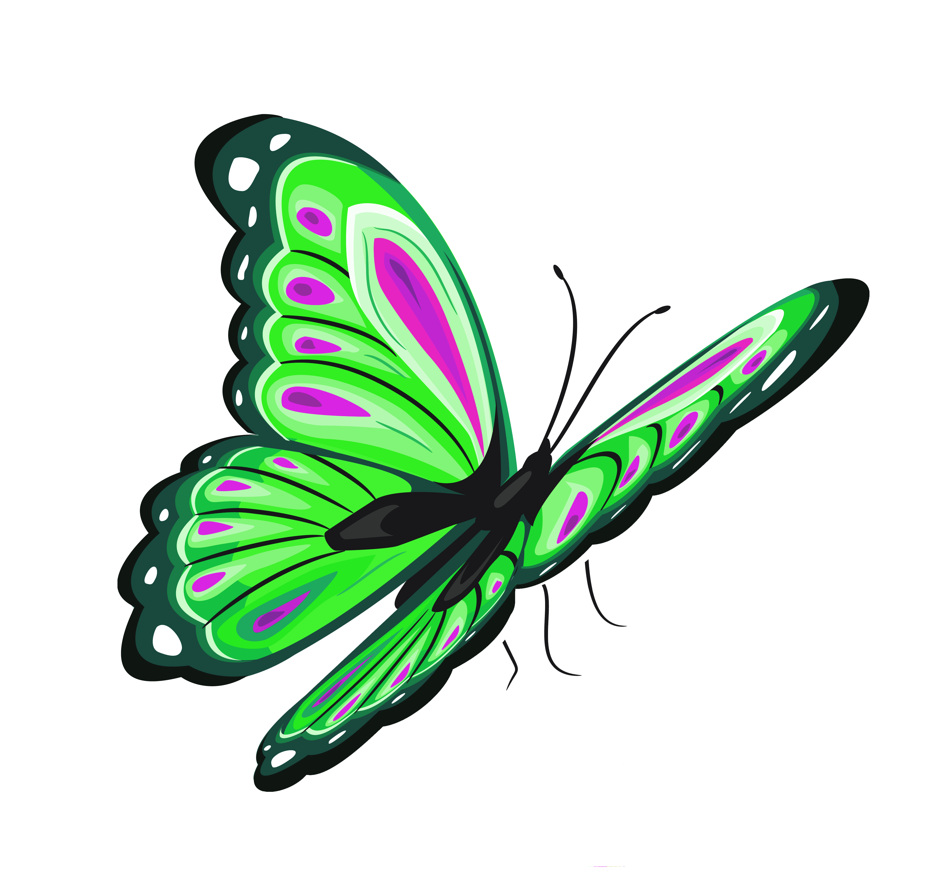 Flying Butterfly Clipart - ClipArt Best