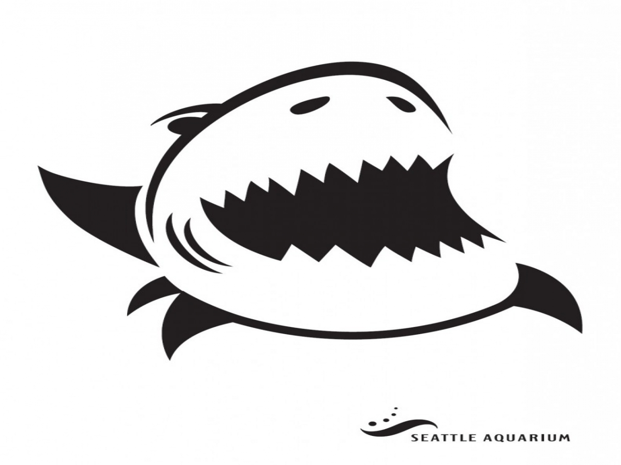 Shark stencil designs clipart best
