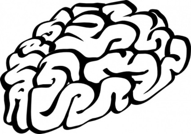 Clip Art Brain Clipart Free free brain clipart images best free