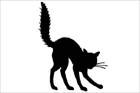 Scared Halloween Black Cat Clipart Best