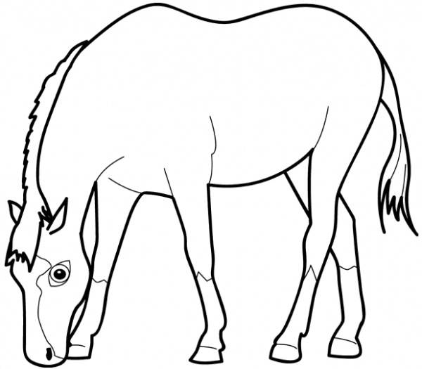 Horse Eating Grass coloring page | Super Coloring - ClipArt Best ...