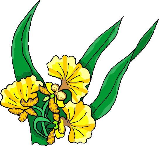 Easter flower clip art clipart best