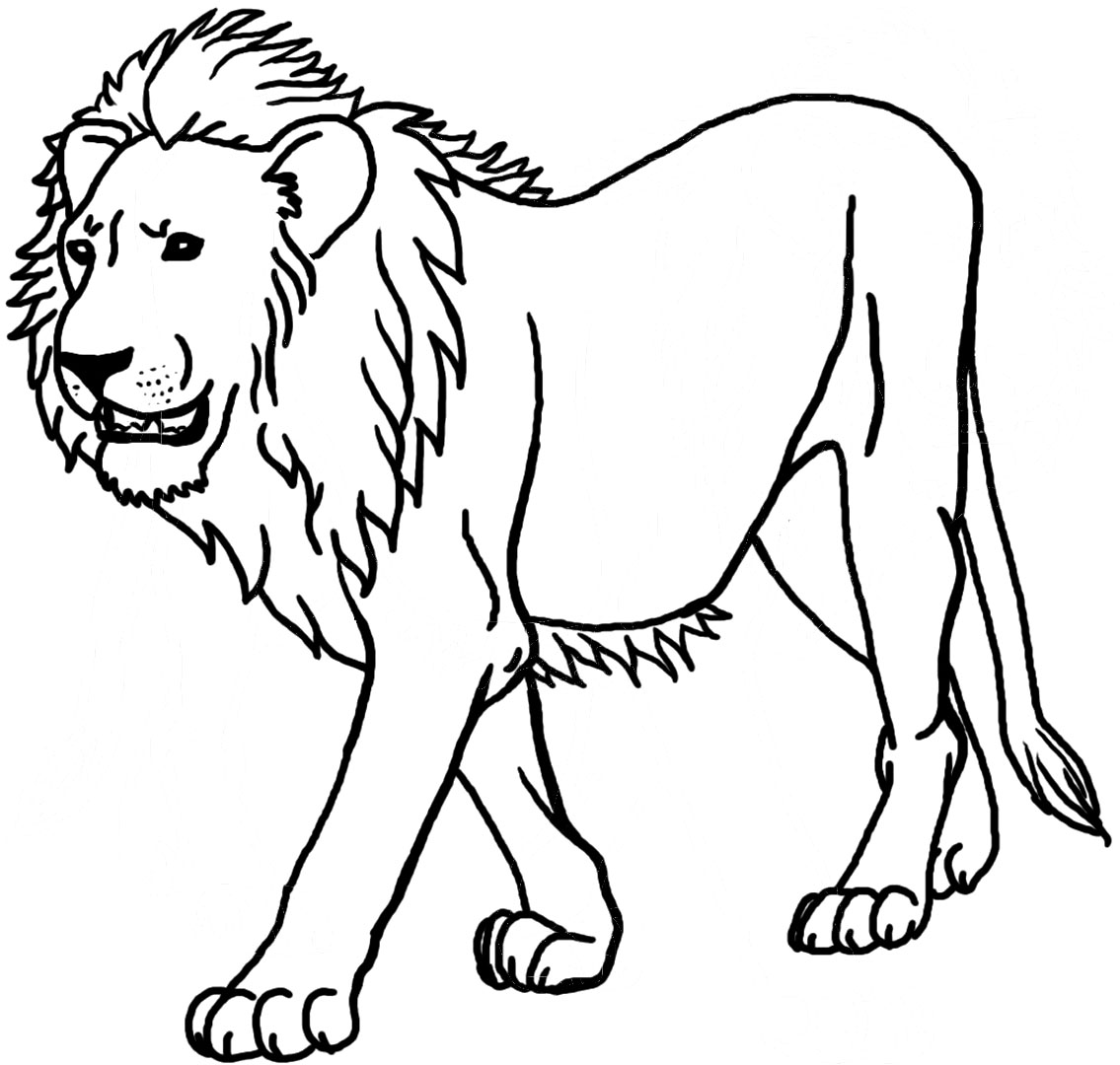lion growling coloring pages - photo#29